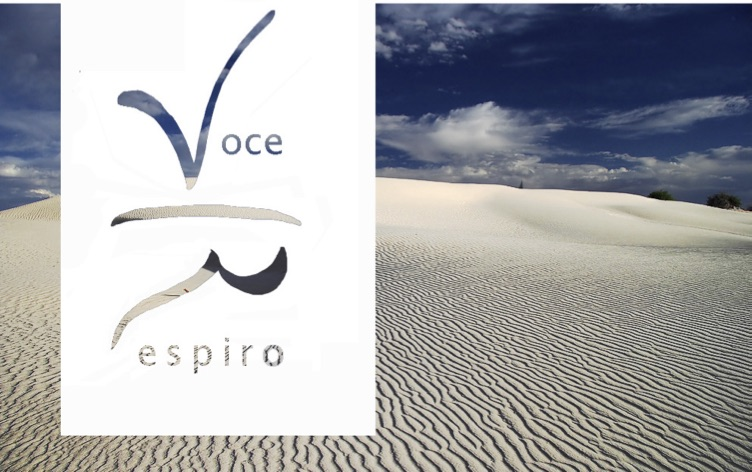 Questa immagine ha l'attributo alt vuoto; il nome del file è logoVoceRespiro_ARSound-LM.jpg